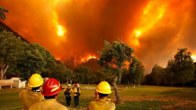 Incendio patagónico